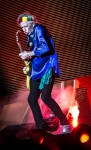 It's only rock 'n' roll (but I like it) – Rolling Stones, Circo Massimo, 22 giugno 2014